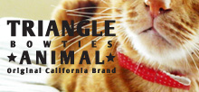 triangle animal
