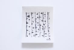 スポンジワイプ 白樺  by anneko design
