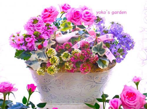 花 プレゼント オシャレ*ミニバラ花鉢ギフト(祝福バード付き)