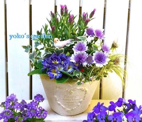 花 プレゼント ラベンダー*春のサムシングブルー花鉢植えギフト(祝福バード付き)