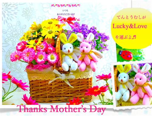 【母の日 花 送料無料】母の日人気花&ぬいぐるみ寄せ鉢ギフト-Mother's Basket-(送料無料)