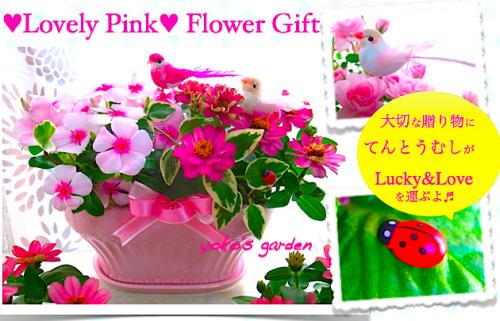 花 プレゼント オシャレ*Lovely Pink嬉しい誕生日ギフト(陶器・受け皿付)送料無料!!