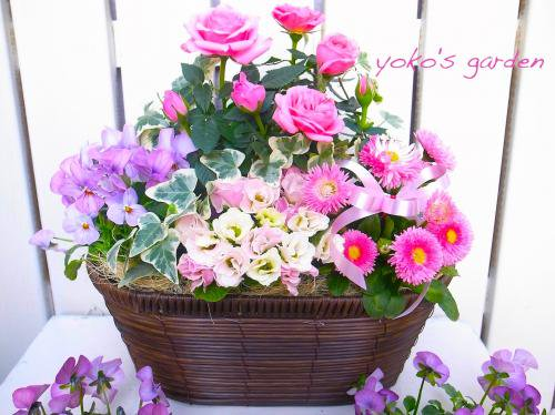バラ プレゼント 花鉢植え *上品で華やかなバラ寄せ植えギフト(送料無料!!)数量限定