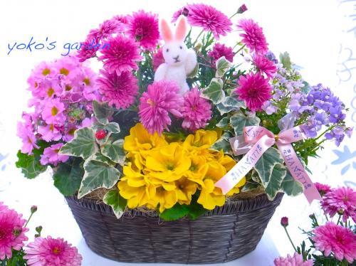 花 プレゼント 人気*冬のRomance花鉢ギフト(送料無料)