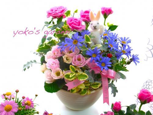 バラ プレゼント*バラ&お花のエレガントな花鉢ギフト寄せ植え(送料無料)(受け皿付き)