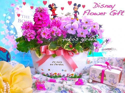 ディズニー 花 ギフト*ディズニー花プレゼント花鉢寄せ植え鉢植えギフト-ミッキー&ミニー -(送料無…