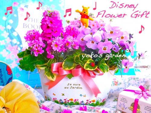 ディズニー 花 ギフト*ディズニー花プレゼント花鉢寄せ植え鉢植えギフト-プーさん -(送料無料)