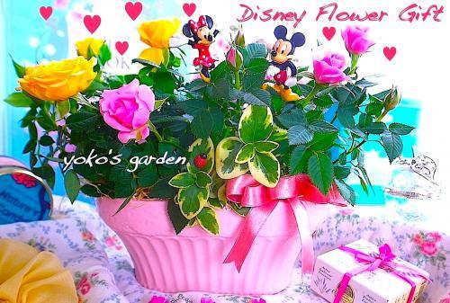 母の日ディズニー花ギフト*バラ プレゼント陶器鉢植え-ミッキー&ミニー-(送料無料!!)(受け皿セット)