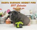 サンタ・バーバラ スキニーギニアピッグ 20017年 カレンダー【SANTA BARBARA SKiNNY PiGS】