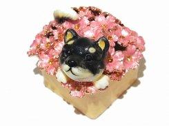 『 柴犬のこてつ ジュエリーボックス 』【 ピィアース Piearth Japan 】アクセサリー ジュエリー 置物 インテリア かわいい モチーフ オブジェ ケース 動物 イヌ 花 フラワー