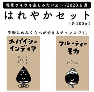 <img class='new_mark_img1' src='https://img.shop-pro.jp/img/new/icons50.gif' style='border:none;display:inline;margin:0px;padding:0px;width:auto;' />はれやかセット