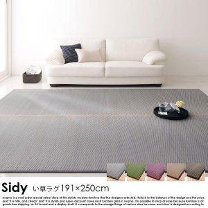 国産ふっくらい草ラグ Sidy【シディ】191×250cmの商品写真