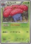《Pokemon》ラフレシア