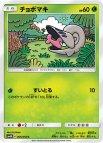 《Pokemon》チョボマキ