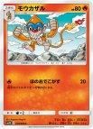 《Pokemon》モウカザル