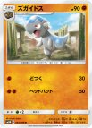 《Pokemon》ズガイドス