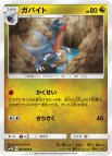 《Pokemon》ガバイト