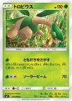 《Pokemon》トロピウス