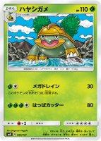 《Pokemon》ハヤシガメ