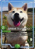 《DM》GRの犬 ワンワンワン