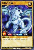 【遊戯王特価販売中】青眼の白猫