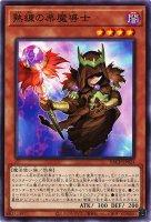 熟練の栗魔導士