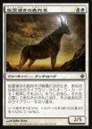 《MTG》族霊導きの鹿羚羊