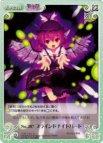 《ChaosTH》No.207 ブラインドナイトバード 【R】