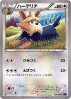 《Pokemon》ハーデリア