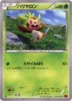 《Pokemon》ハリマロン