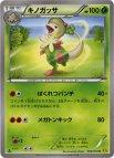 《Pokemon》キノガッサ