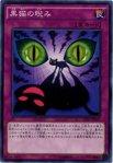 【(10/1(月)10時迄)総決算セール!店内全品10%OFF!】黒猫の睨み