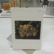 写真集「あじさいとこころ」 写真:岩崎美里