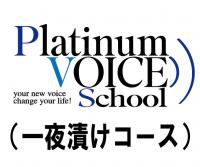 PlatinumVOICE オンラインレッスンチケット:一夜漬けコース(60分2枚綴り)