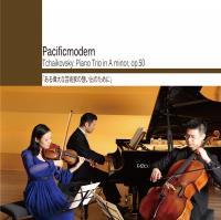 Tchaikovsky: Piano Trio in A minor, Op.50「ある偉大な芸術家の想い出のために」