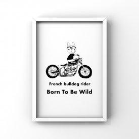 【L判額付き】フレブルイラスト「Wild bike」
