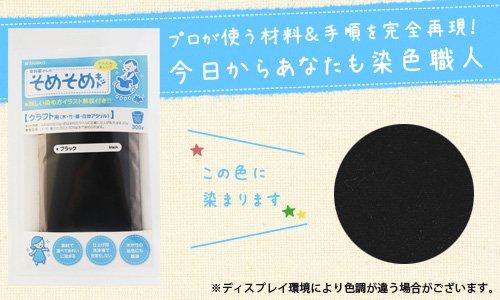 そめそめキット クラフト用 ブラック / 染色助剤から色止め剤まですべてセット