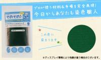 そめそめキット クラフト用 グリーン / 染色助剤から色止め剤まですべてセット