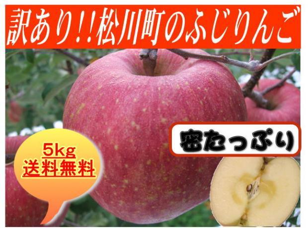 【訳あり】松川町のふじりんご5kg(送料無料)