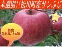 【未選別】信州松川町のサンふじ1kg(袋入り)