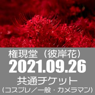 09月26日(日)開催『Cocofuri No room at 権現堂(彼岸花)』