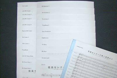 弦楽セレナーデ第2楽章より/チャイコ(ブリティッシュブラス編成楽譜)