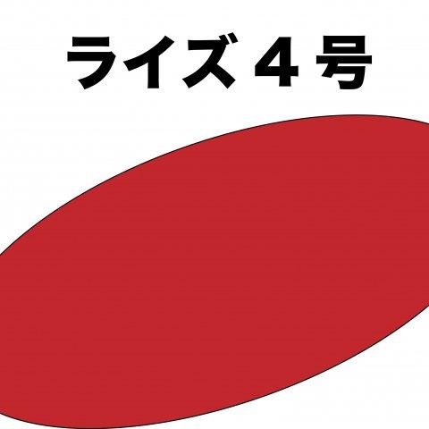 ライズ4号(10kg)