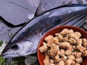 【冷凍】嵐山鮮魚 かつおパラパラミンチ 300g
