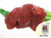 犬猫の泌尿器疾患におすすめの生肉「国産鶏レバー」