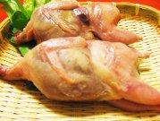 犬猫の手作りご飯におすすめのうずら肉「うずら(メス)2羽」