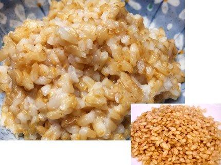 犬猫の手作りご飯(主食)「九州産発芽玄米」