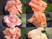 犬猫の手作りご飯におすすめの博多一番鶏肉セット「鶏ガラ・手羽元・砂ずり・すり身・モモ肉・ムネ肉」