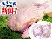 犬猫の手作りご飯におすすめの鶏肉「丸鶏(博多一番どり)」