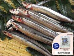 犬猫の手作りご飯におすすめの魚「きびなご」
